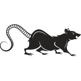 Naklejka wycinana N63 szczur O
