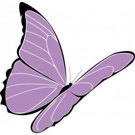Naklejka ścienna dekoracyjna D06 motyle C