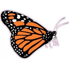 Naklejka ścienna dekoracyjna D07 motyle C