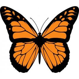 Naklejka ścienna dekoracyjna D09 motyle C