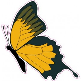 Naklejka ścienna dekoracyjna D12 motyle P