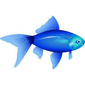 Naklejka ścienna dekoracyjna D77 ryba O