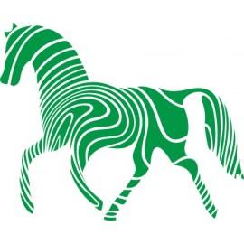 Naklejka ścienna, na ścianę, dekoracyjna N51 koń O