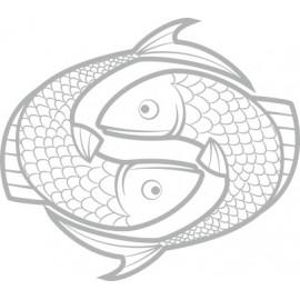 Naklejka ścienna, na ścianę, dekoracyjna N91 ryba O