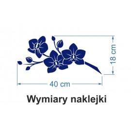 Naklejka dekoracyjna - SFE01b Kwiaty
