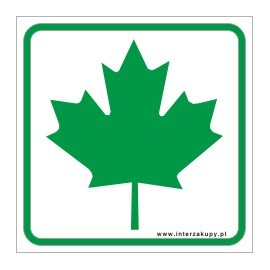 naklejka IN 26 zielony listek młody kierowca