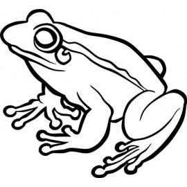 Naklejka wycinana N70 żaba O