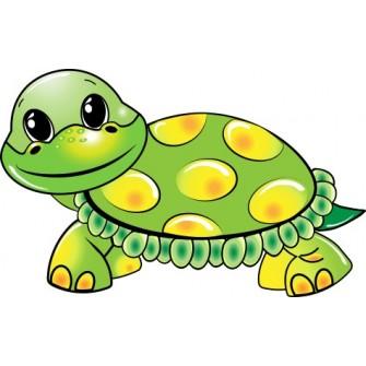 Naklejka ścienna dekoracyjna D42 żółw O