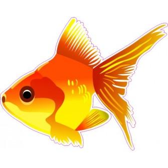 Naklejka ścienna dekoracyjna D78 ryba O