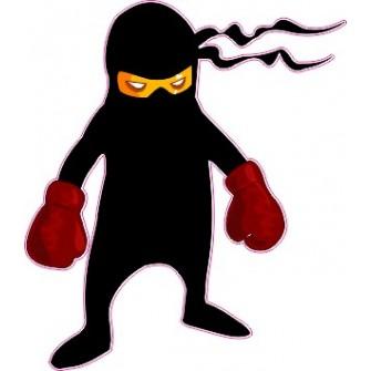 Naklejka ścienna dekoracyjna D153 ninja O