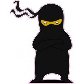 Naklejka ścienna dekoracyjna D154 ninja O