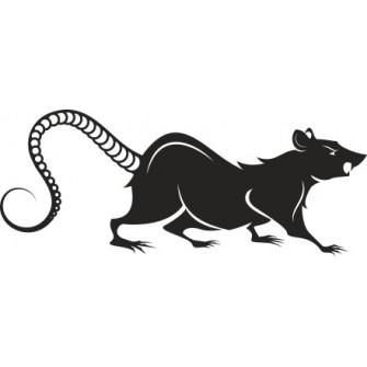 Naklejka ścienna, na ścianę, dekoracyjna N63 szczur O