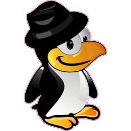 Naklejka ścienna dekoracyjna D188 pingwin O