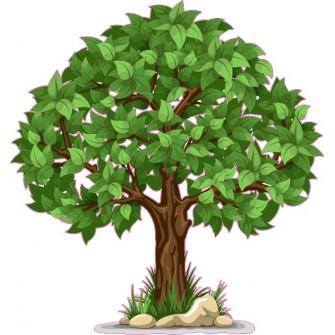 Naklejka ścienna - kolorowe drzewo SD03a drzewo lato