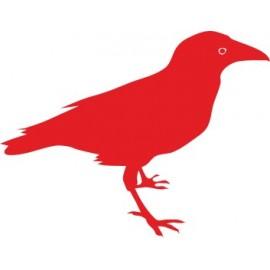 Naklejka ścienna, na ścianę, dekoracyjna N100 ptak