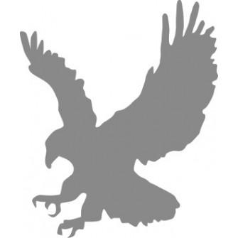 Naklejka ścienna, na ścianę, dekoracyjna N108 ptak O