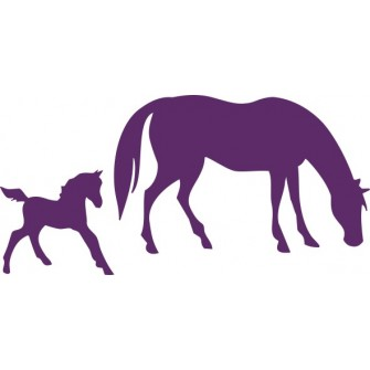 Naklejka wycinana N123 konie