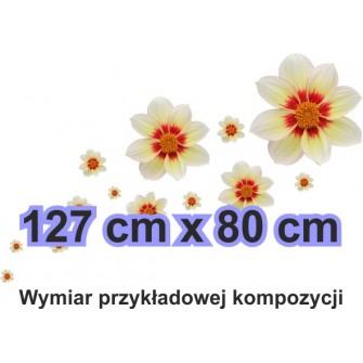Naklejka ścienna SD14 dalia kwiat