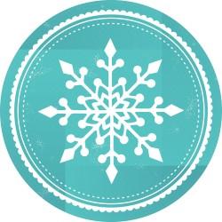 Naklejka na witrynę - W04C płatek śniegu