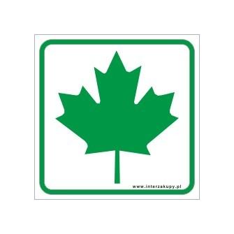 naklejka zielony listek młody kierowca
